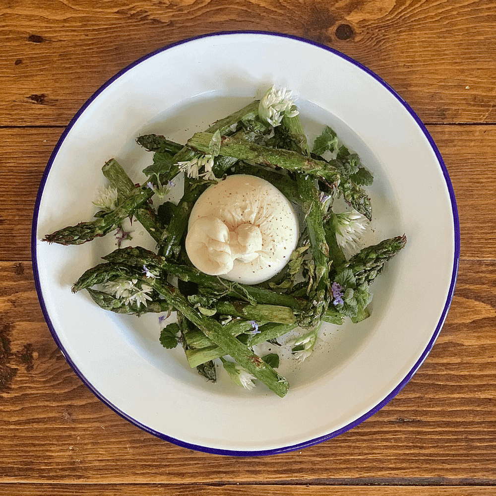 Gozney Roccbox Roast English Asparagus with Burrata