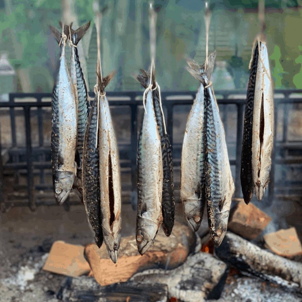 mackerel smoking