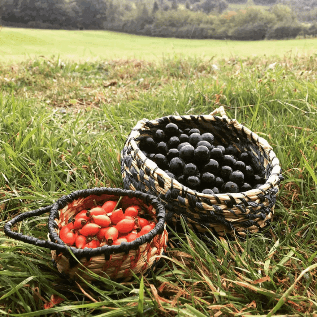 Autumn Foraging