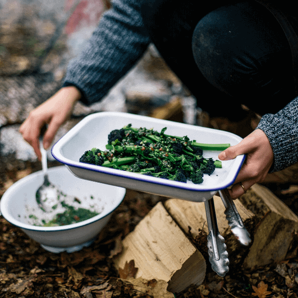 Vegetarian cooking over fire course
