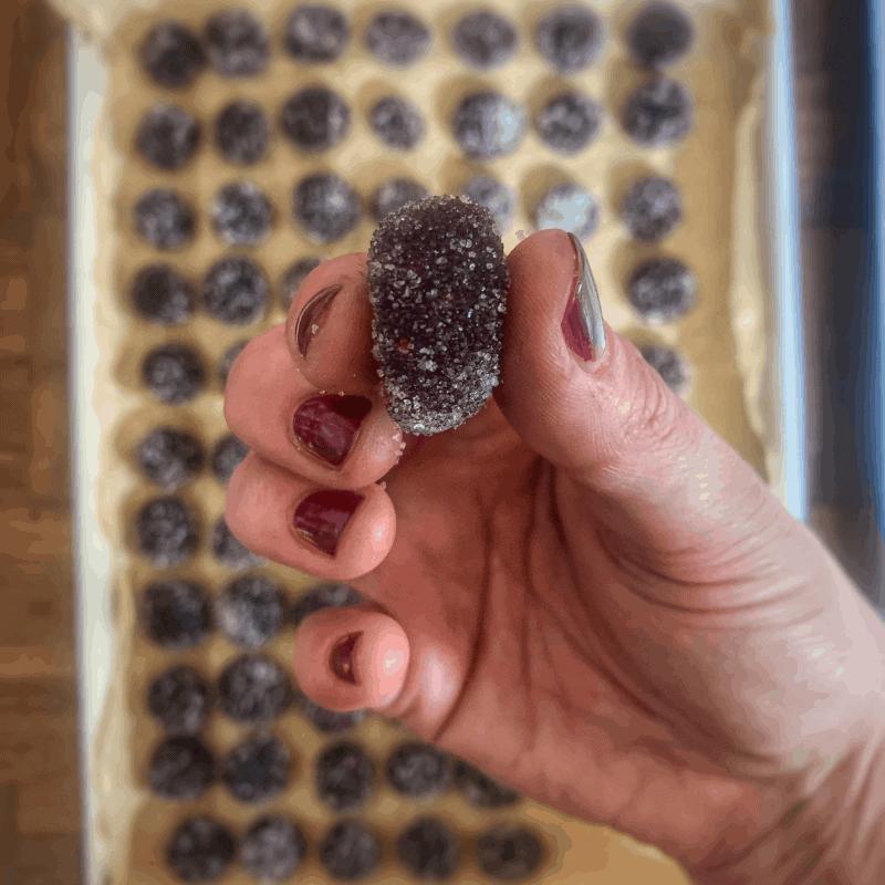 wild fruit pastilles